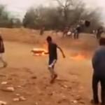 Jóvenes prenden fuego a un perro en San Luis Potosí y se burlan de él