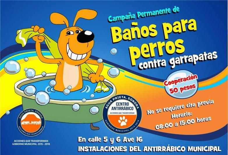 Mantiene Antirrábico campaña permanente de baños antigarrapatas
