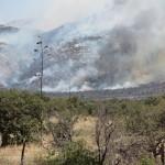 Coordina UMPC labores para controlar incendio forestal en Puerto San Luis